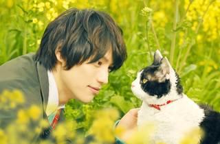 ★メイン_「旅猫リポート」.jpg
